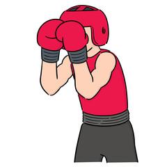 vector set of boxer