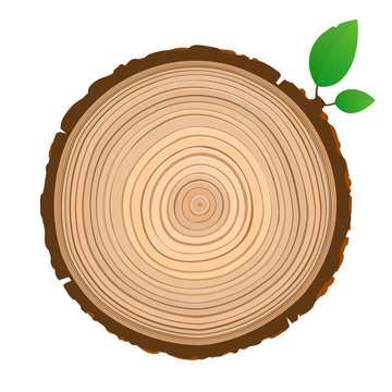 Wood sign icon cross section of the trunk with tree rings