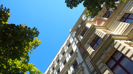 Grünes Berlin: Altbaufassaden in Mitte, Straßenbäume