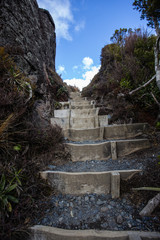Steps in the Tongariro National Park 2