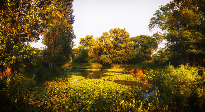 Lagoon and Nature Preserve. Humboldt Park, Chicago. Landscape Panorama.