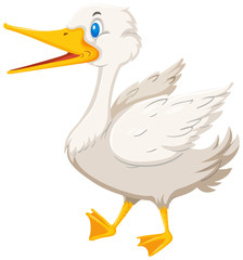 A goose on white background