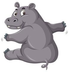 A cute hippopotamus on white background