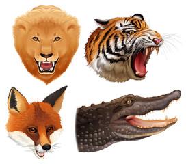 Set of animals heads