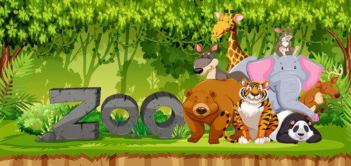 Set of zoo animals in jungle