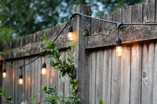 Backyard fence with string lights on a summer evening