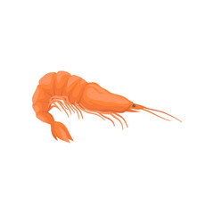 Fresh and tasty shrimp. Boiled prawn with bright red shell and long claws. Flat vector for cafe menu or advertising poster