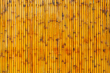 Bamboo wall used as background.