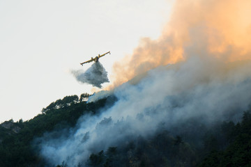 A water bomber aircraft, Canadair, flying over a wildfire in a pine forest