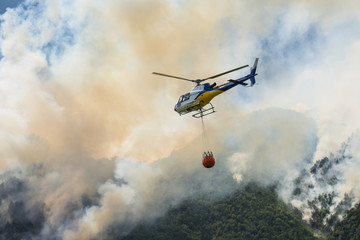 Fotorollo Hubschrauber Aerial firefighting with helicopter on a big wildfire in a pine forest