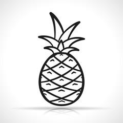 Vector pineapple on white background