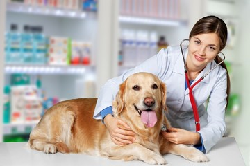 Beautiful young veterinarian with a dog on a white background
