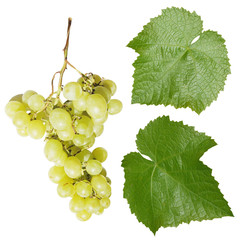 Set of green grapes isolated on white background