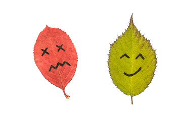 Two colorful autumn leaves with face emotions - dissatisfied and happy. Black marker on the red and green leaves. Isolated on white background.