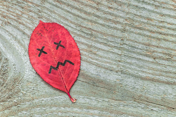 Red autumn leaf with sad face emotions on the old wooden background. Black marker on the leaf.
