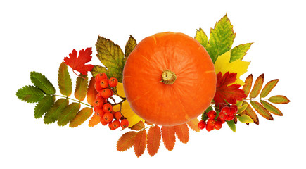 Round pumpkin, rowanberries and autumn colorful leaves