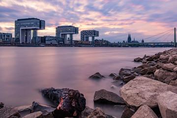 Kranhäuser, Kölner Dom und Severinsbrücke - Ausblick von den Poller Wiesen aus über den Rhein - Kölner Panorama bei Sonnenuntergang in Lila Pastellfarben
