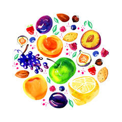Stylized hand drawn watercolor illustration with apples, lemons, plums, apricots, berries and nuts in circle