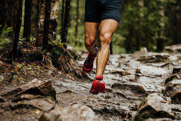 Fototapete - wet feet runner athlete running on trail stones in forest