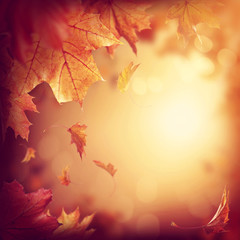 Wall Mural - Abstract autumn background
