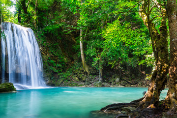 Wall Mural - Beautiful waterfall in Thailand National Park