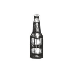 Bottle of beer illustration. Beer bottle sketch hand drawing
