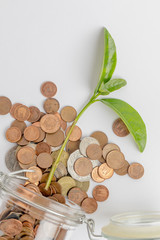 Coins in a dropped glass jar with a green plant growing inside, isolated on white