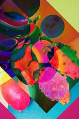 colorful design of exotic fruits - collage - pop art