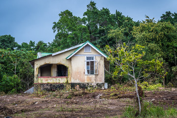 Front view of abandoned old house with an ackee fruit tree in front, in the countryside in Jamaica