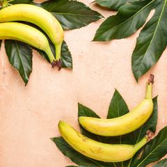 Fruit background. Summer concept.