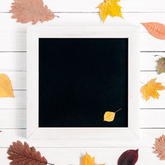 Autumn composition. Front view of an empty black board for writing with chalk. White rustic wooden background and colorful different autumn leaves. Flat lay, top view, copy space