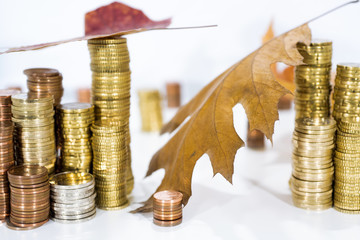 Autumn abstract photo. Yellow leaves with some coins.