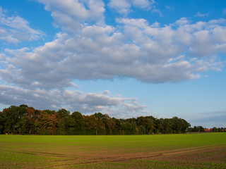 Bauernschaft mit blauem Wolkenhimmel. Standort: Deutschland, Nordrhein - Westfalen, Borken