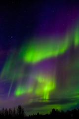 Apatity, Kola Peninsula. Aurora Borealis in April. Zigzag
