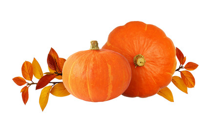 Two orange pumpkins and autumn leaves