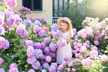 Zelfklevend Fotobehang Hydrangea Little girl isin bushes of hydrangea flowers in sunset garden. Flowers are pink, blue, lilac and blooming by country house. Kid is in pink dress, straw hat. Romantic concept of childhood, tenderness.