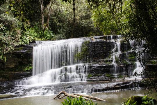 Cascata em riacho no meio do bosque, foto frontal em baixa velocidade