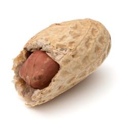 Fototapete - Opened peanut or groundnut pod isolated on white background close up
