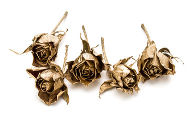 gold roses isolated on white background cutout. Golden dried flower heads, romance concept.