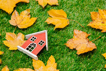 Golden autumn maple leaves and little wooden house on green grass. Above view