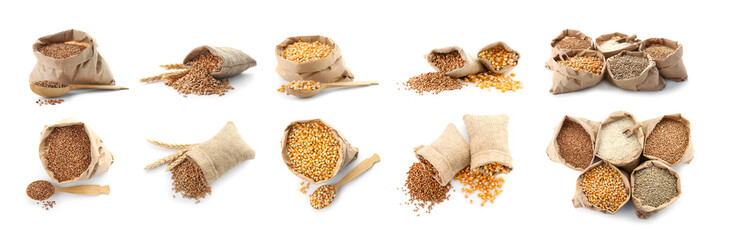 Set with different cereal grains on white background