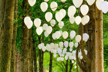 balloons hanging on tree in Namisum (Nami Island) , Chuncheon, South Korea