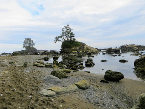 Crazy hike along the beautiful misty coasts and forest of Vancouver Island doing the rugged West Coast Trail.  Many bridges and ladders and other fun obstacles