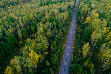aerial view of trail in colorful autumn forest