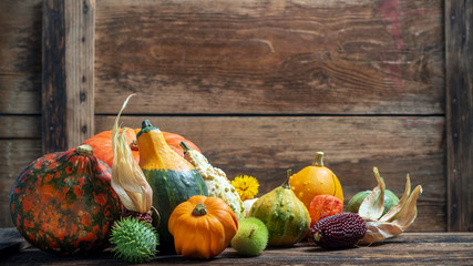 Mixed autumn vegetables in front of an old wooden wall, copy space