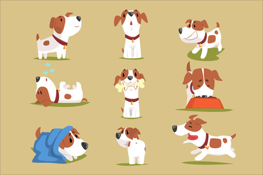 Funny puppy daily routine set, cute little dog in his evereday activity colorful character