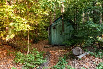 Mystic old abandoned hunter's cabin in the forest during sunrise