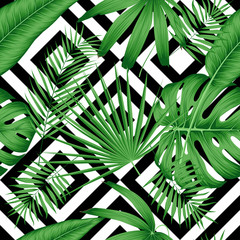 Wall Mural - Exotic vector seamless pattern with tropical leaves on a geometric background