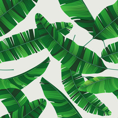 Wall Mural - Colorful summer seamless tropical pattern with banana leaves