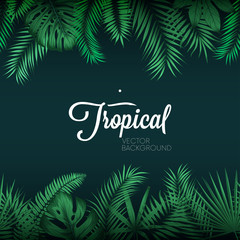 Tropical vector background with exotic green palm leaves